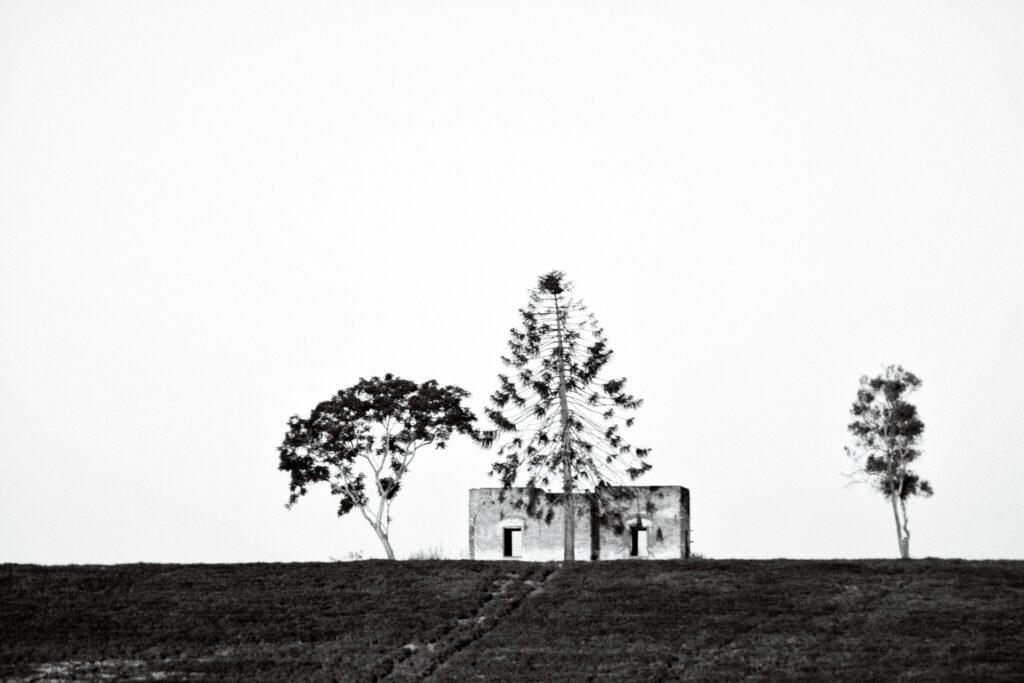Construcción en zona rural